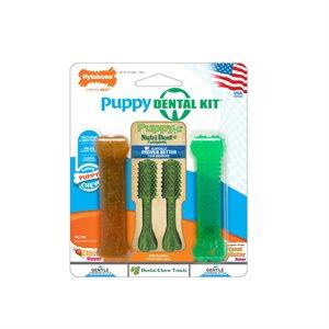 Nylabone Puppy Dental Pack Petite 4 Count