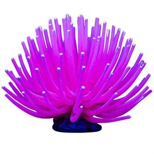 Spectrum Brands Amémone « GloFish » Grande Rose